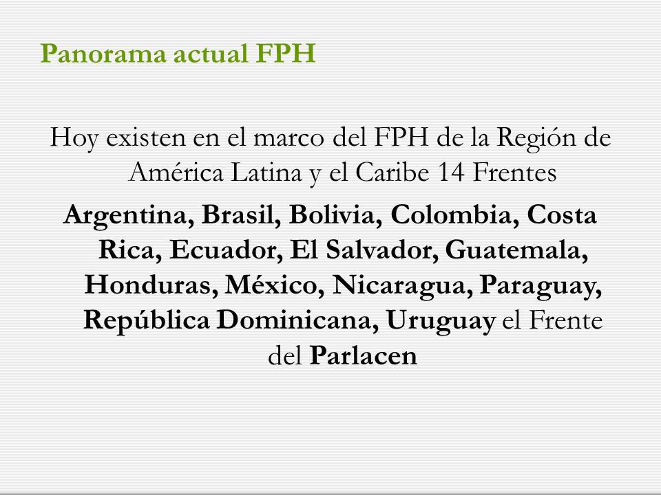 Panorama actual FPH Hoy existen en el marco del FPH de la Región de América Latina y el Caribe 14 Frentes Argentina, Brasil, Bolivia, Colombia, Costa Rica, Ecuador, El Salvador, Guatemala, Honduras, México, Nicaragua, Paraguay, República Dominicana, Uruguay el Frente del Parlacen