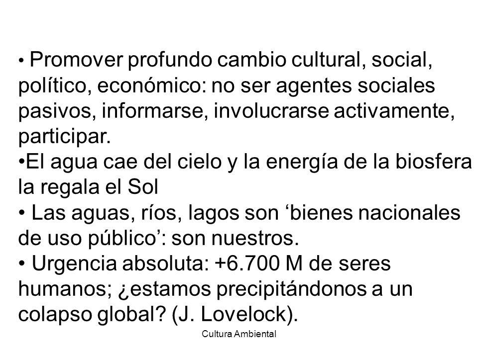 Cultura Ambiental Promover profundo cambio cultural, social, político, económico: no ser agentes sociales pasivos, informarse, involucrarse activament