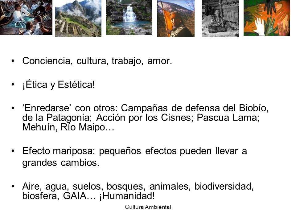 Cultura Ambiental Conciencia, cultura, trabajo, amor. ¡Ética y Estética! Enredarse con otros: Campañas de defensa del Biobío, de la Patagonia; Acción