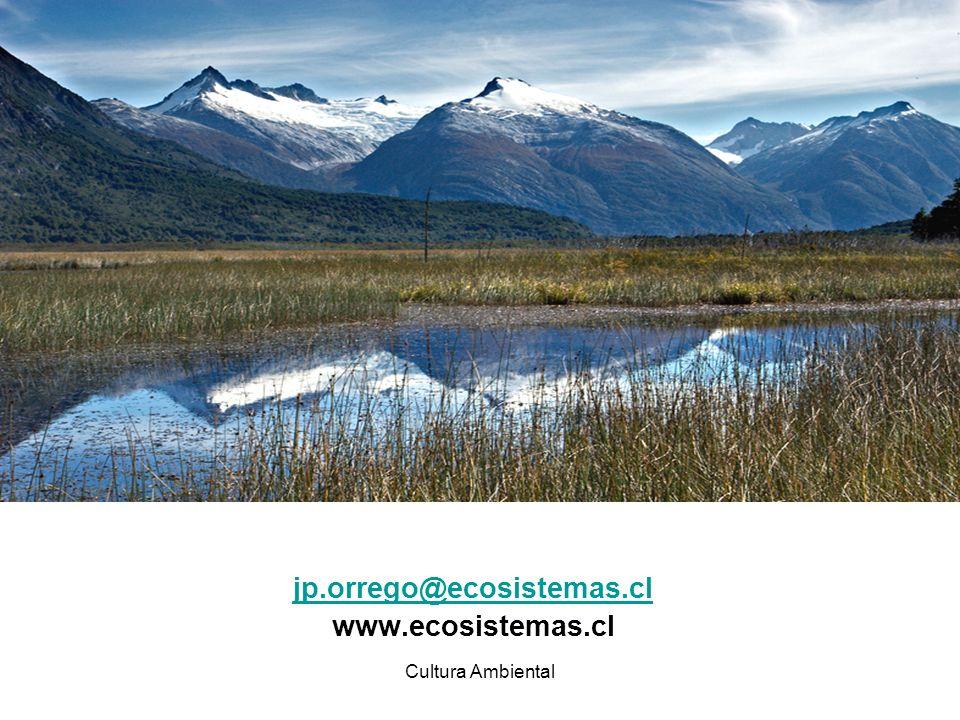 Cultura Ambiental jp.orrego@ecosistemas.cl www.ecosistemas.cl