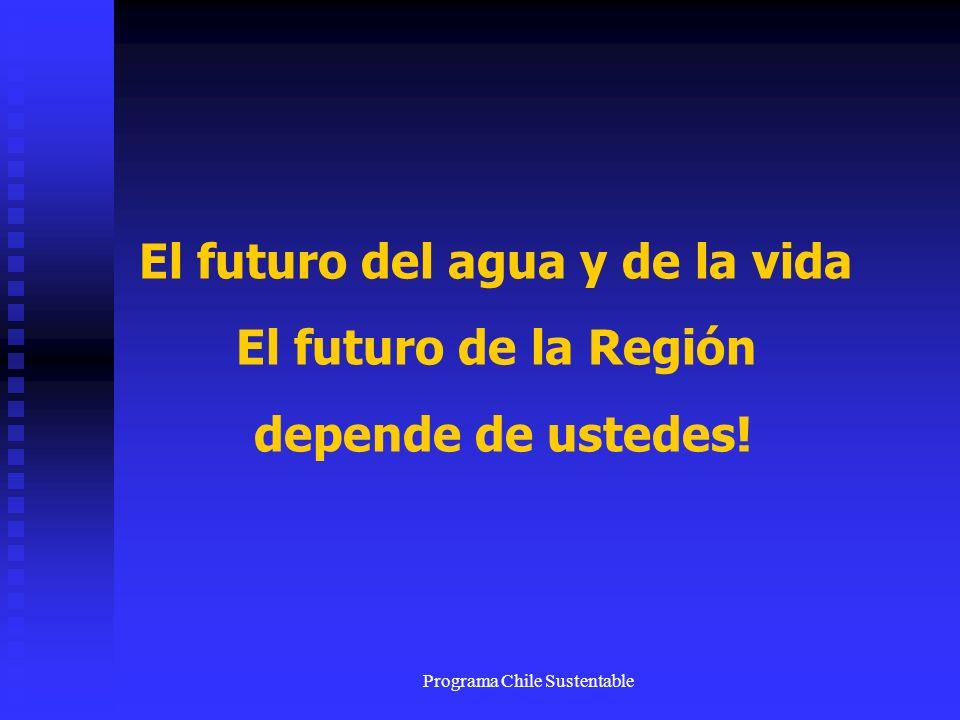 Programa Chile Sustentable El futuro del agua y de la vida El futuro de la Región depende de ustedes!