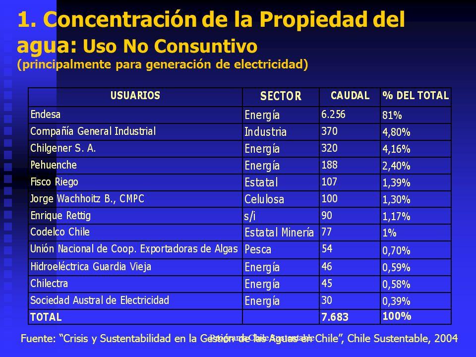 Programa Chile Sustentable 1. Concentración de la Propiedad del agua: Uso No Consuntivo (principalmente para generación de electricidad) Fuente: Crisi