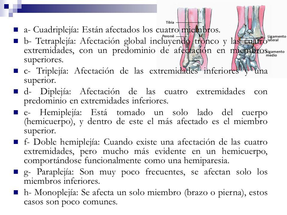 a- Cuadriplejía: Están afectados los cuatro miembros. b- Tetraplejía: Afectación global incluyendo tronco y las cuatro extremidades, con un predominio