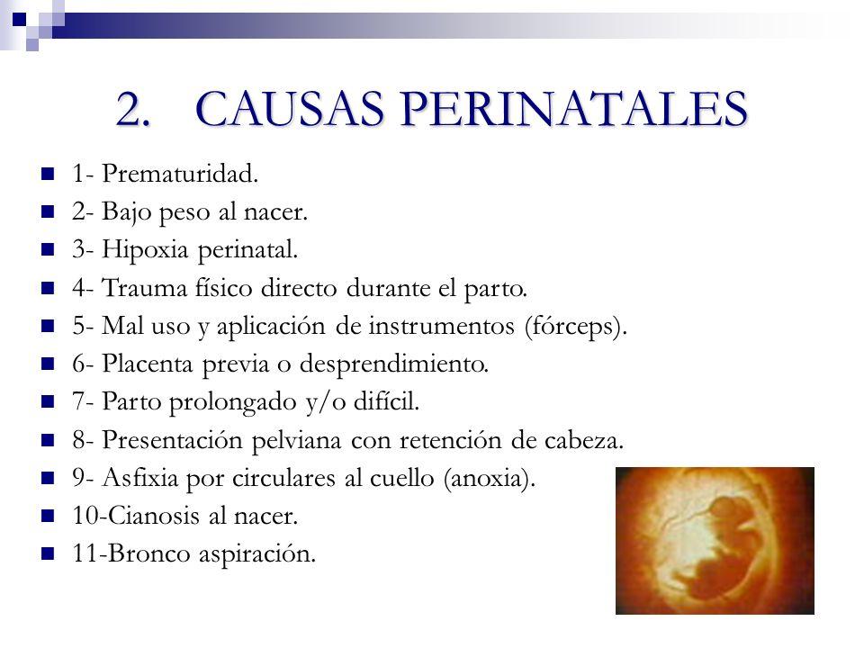 2.CAUSAS PERINATALES 1- Prematuridad. 2- Bajo peso al nacer. 3- Hipoxia perinatal. 4- Trauma físico directo durante el parto. 5- Mal uso y aplicación