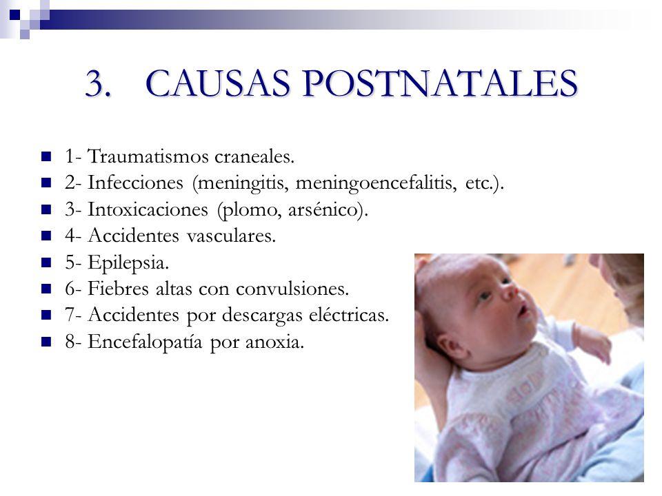 3.CAUSAS POSTNATALES 1- Traumatismos craneales. 2- Infecciones (meningitis, meningoencefalitis, etc.). 3- Intoxicaciones (plomo, arsénico). 4- Acciden