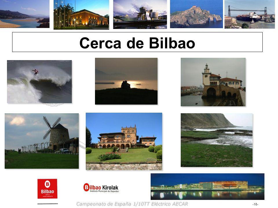 -16- Campeonato de España 1/10TT Eléctrico AECAR Cerca de Bilbao