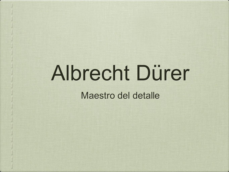 Albrecht Dürer Maestro del detalle