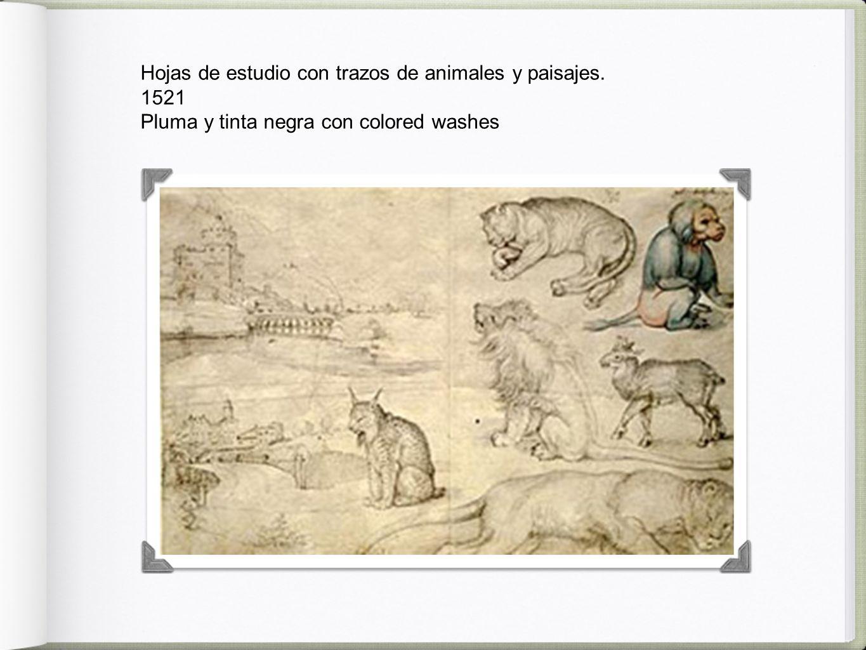 Hojas de estudio con trazos de animales y paisajes. 1521 Pluma y tinta negra con colored washes