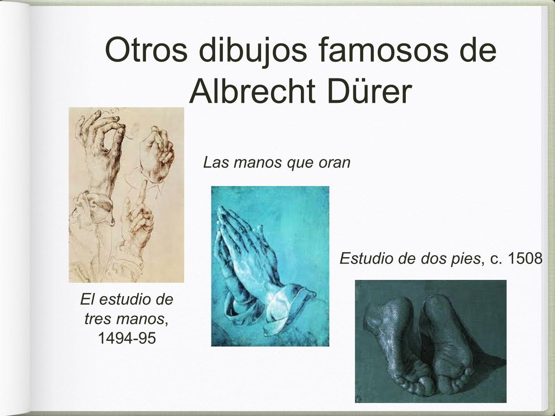 Otros dibujos famosos de Albrecht Dürer Las manos que oran Estudio de dos pies, c.