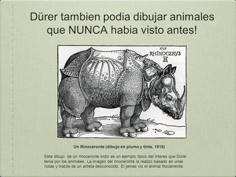 Dürer tambien podia dibujar animales que NUNCA habia visto antes.
