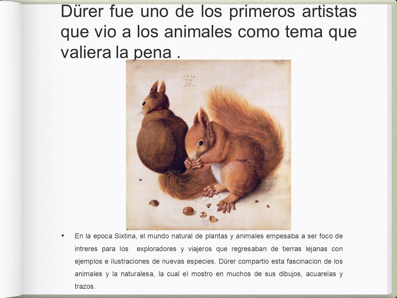 Dürer fue uno de los primeros artistas que vio a los animales como tema que valiera la pena.