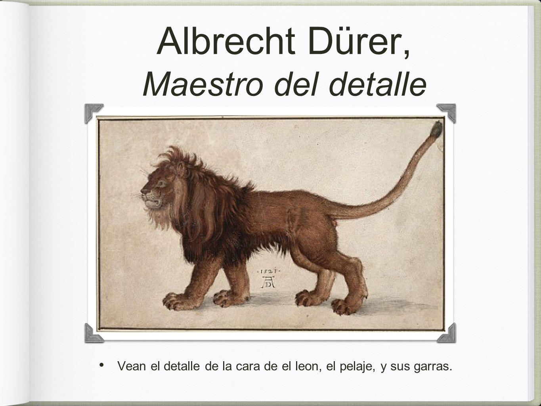 Albrecht Dürer, Maestro del detalle Vean el detalle de la cara de el leon, el pelaje, y sus garras.