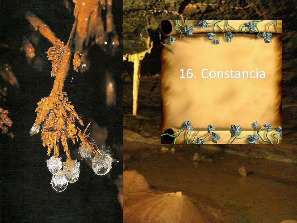 16. Constancia