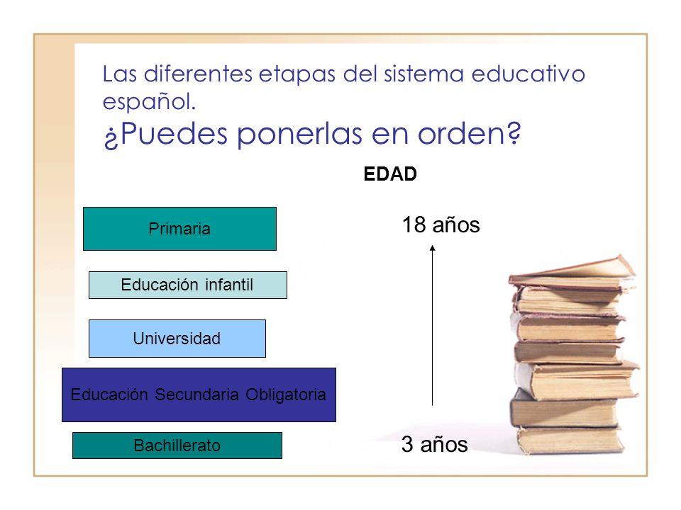 Las diferentes etapas del sistema educativo español.