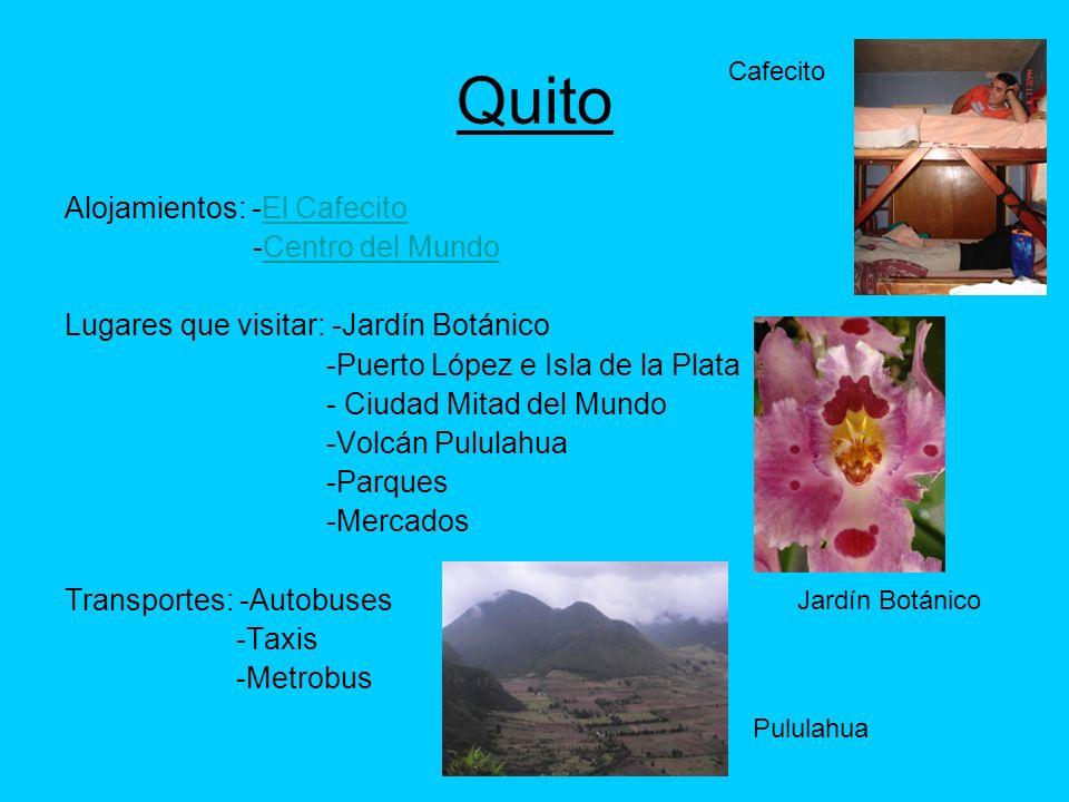 Quito Alojamientos: -El CafecitoEl Cafecito -Centro del MundoCentro del Mundo Lugares que visitar: -Jardín Botánico -Puerto López e Isla de la Plata -