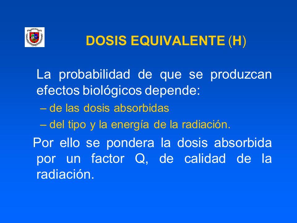 DOSIS EQUIVALENTE (H) La probabilidad de que se produzcan efectos biológicos depende: –de las dosis absorbidas –del tipo y la energía de la radiación.
