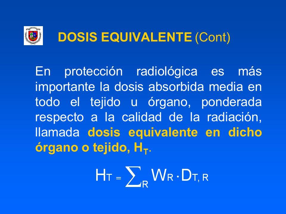 DOSIS EQUIVALENTE (Cont) En protección radiológica es más importante la dosis absorbida media en todo el tejido u órgano, ponderada respecto a la cali