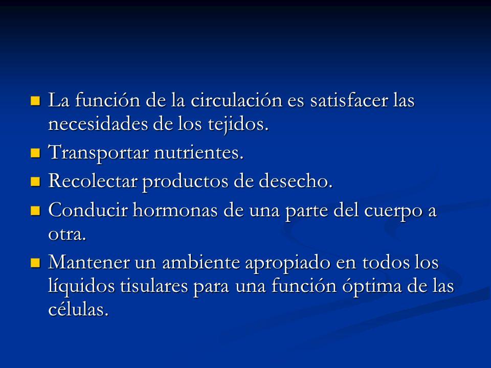 La función de la circulación es satisfacer las necesidades de los tejidos. La función de la circulación es satisfacer las necesidades de los tejidos.