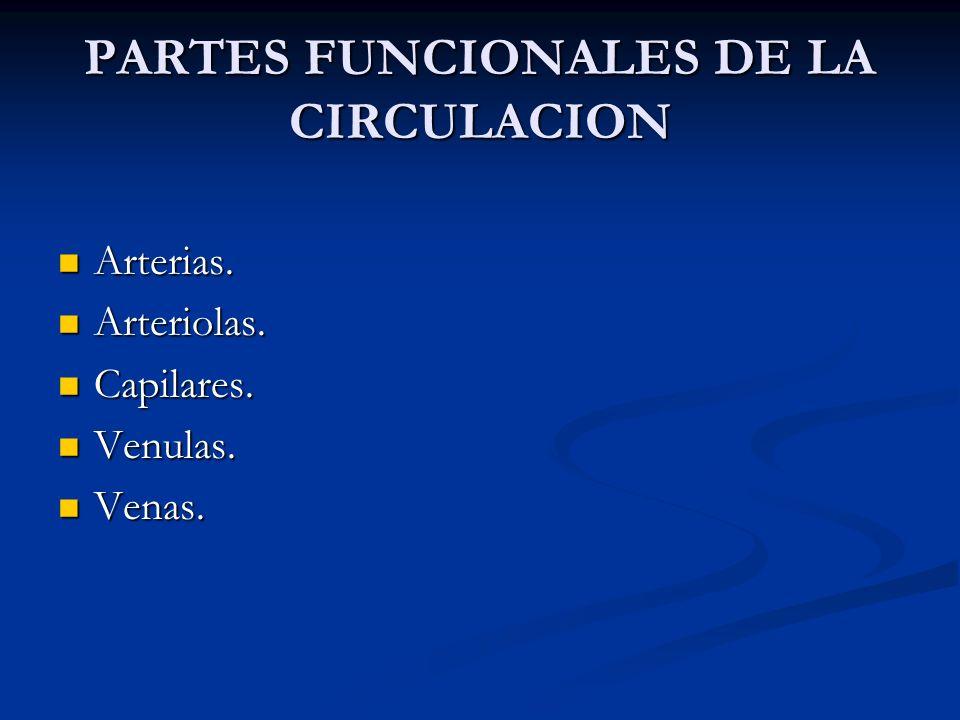 PARTES FUNCIONALES DE LA CIRCULACION Arterias. Arterias. Arteriolas. Arteriolas. Capilares. Capilares. Venulas. Venulas. Venas. Venas.