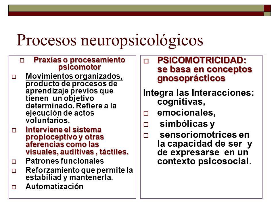 Procesos neuropsicológicos Praxias o procesamiento psicomotor Praxias o procesamiento psicomotor Movimientos organizados, producto de procesos de apre