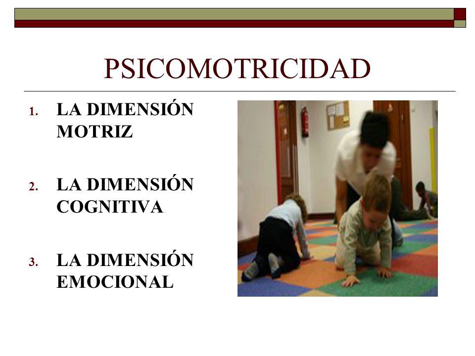 PSICOMOTRICIDAD 1. LA DIMENSIÓN MOTRIZ 2. LA DIMENSIÓN COGNITIVA 3. LA DIMENSIÓN EMOCIONAL