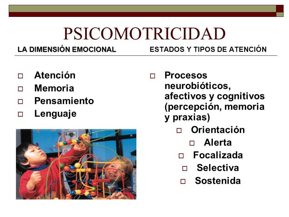 PSICOMOTRICIDAD LA DIMENSIÓN EMOCIONAL Atención Memoria Pensamiento Lenguaje ESTADOS Y TIPOS DE ATENCIÓN Procesos neurobióticos, afectivos y cognitivo