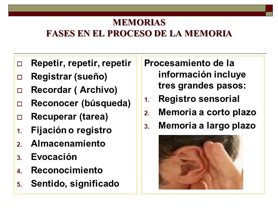 MEMORIAS FASES EN EL PROCESO DE LA MEMORIA Repetir, repetir, repetir Registrar (sueño) Recordar ( Archivo) Reconocer (búsqueda) Recuperar (tarea) 1. F
