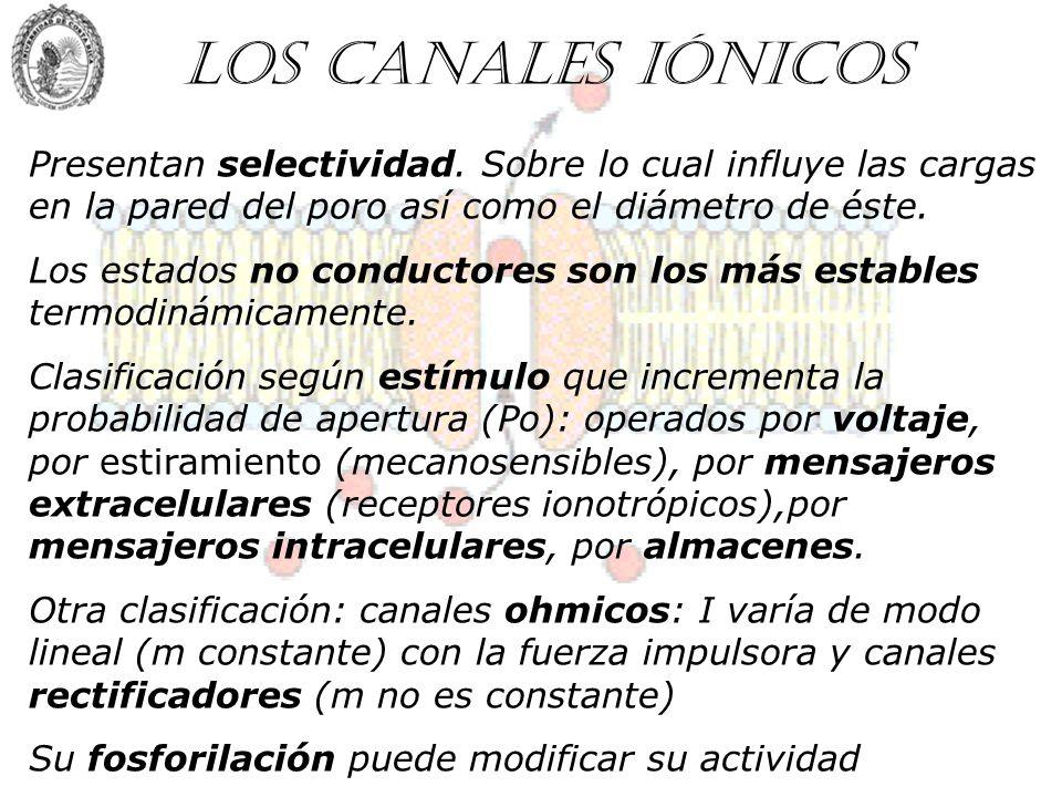 Los canales iónicos Presentan selectividad. Sobre lo cual influye las cargas en la pared del poro así como el diámetro de éste. Los estados no conduct