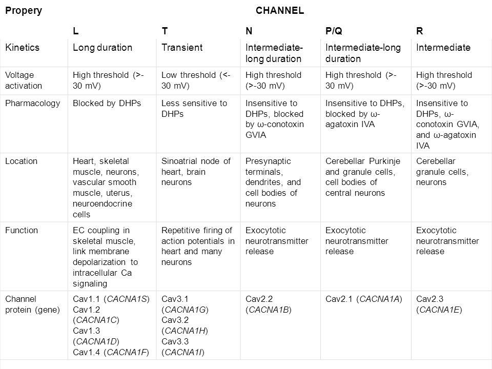 ProperyCHANNEL LTNP/QR KineticsLong durationTransientIntermediate- long duration Intermediate Voltage activation High threshold (>- 30 mV) Low thresho