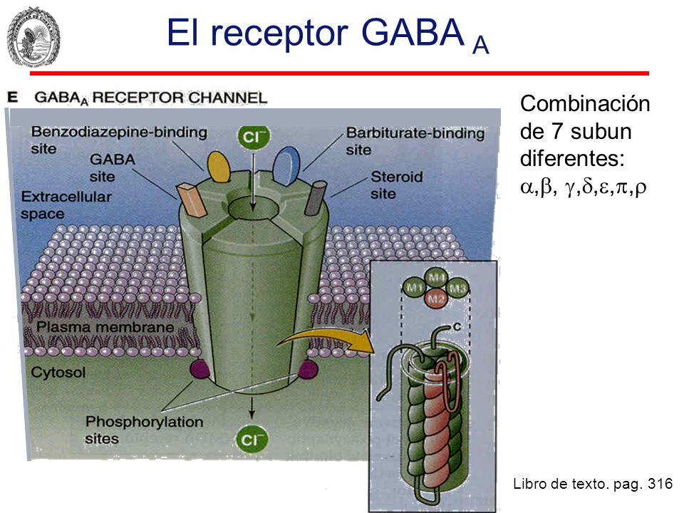 El receptor GABA A Libro de texto. pag. 316 Combinación de 7 subun diferentes:,,,,,,