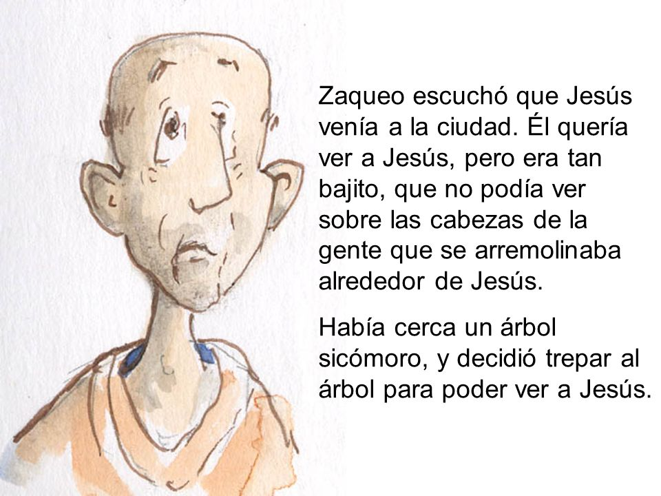 Zaqueo escuchó que Jesús venía a la ciudad. Él quería ver a Jesús, pero era tan bajito, que no podía ver sobre las cabezas de la gente que se arremoli