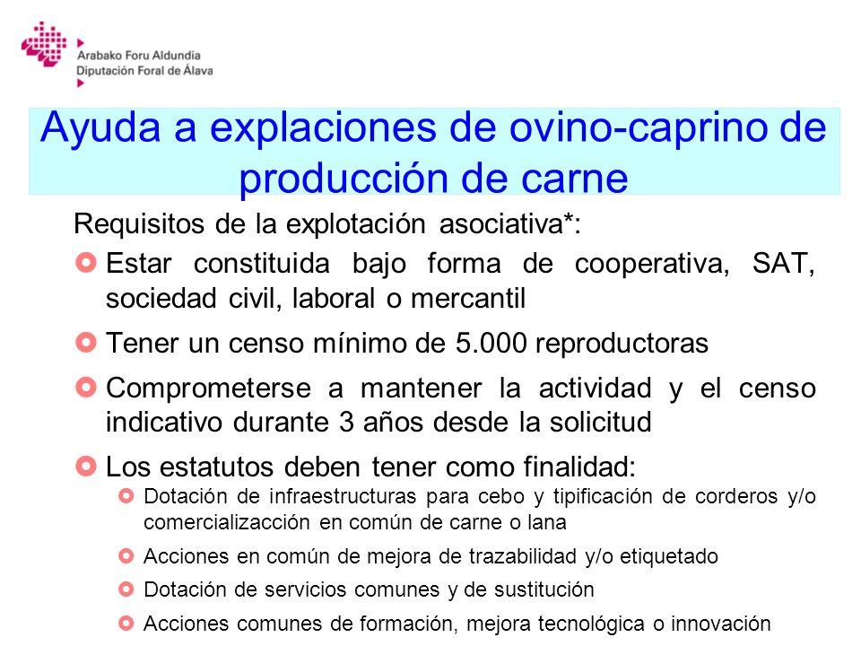 Ayuda a explaciones de ovino-caprino de producción de carne Requisitos de la explotación asociativa*: Estar constituida bajo forma de cooperativa, SAT