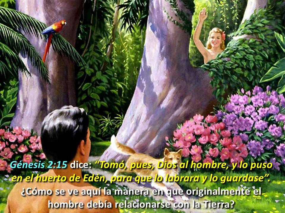 Génesis 2:15 dice: Tomó, pues, Dios al hombre, y lo puso en el huerto de Edén, para que lo labrara y lo guardase. ¿Cómo se ve aquí la manera en que or