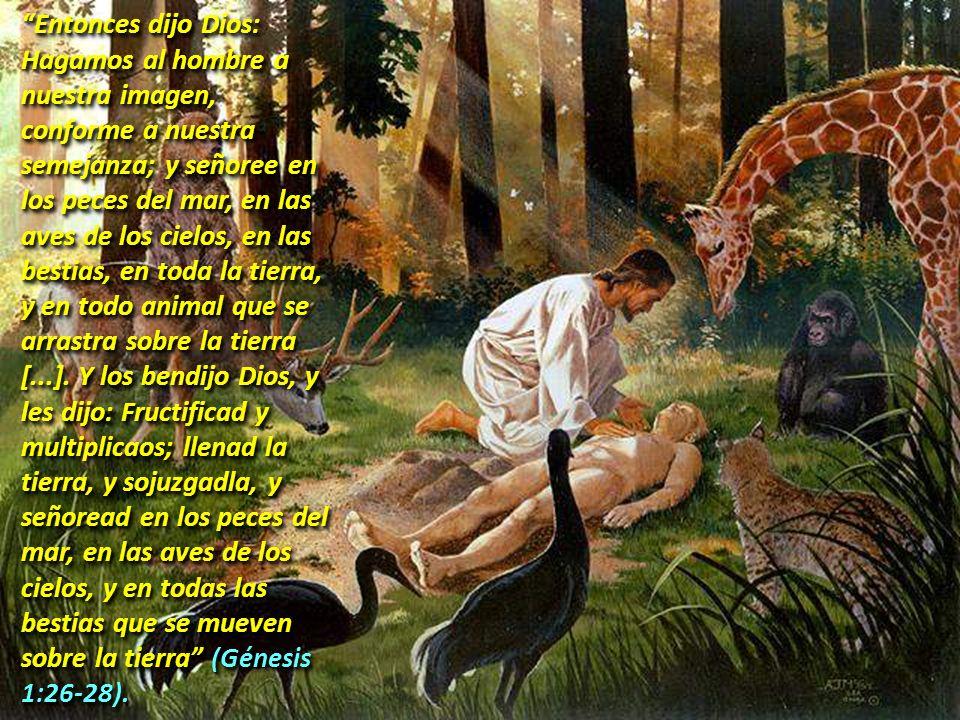 5. EL DOMINIO DE LA HUMANIDAD Entonces dijo Dios: Hagamos al hombre a nuestra imagen, conforme a nuestra semejanza; y señoree en los peces del mar, en