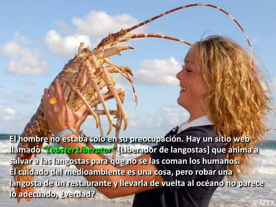 El hombre no estaba solo en su preocupación. Hay un sitio web llamado Lobster Liberator [Liberador de langostas] que anima a salvar a las langostas pa