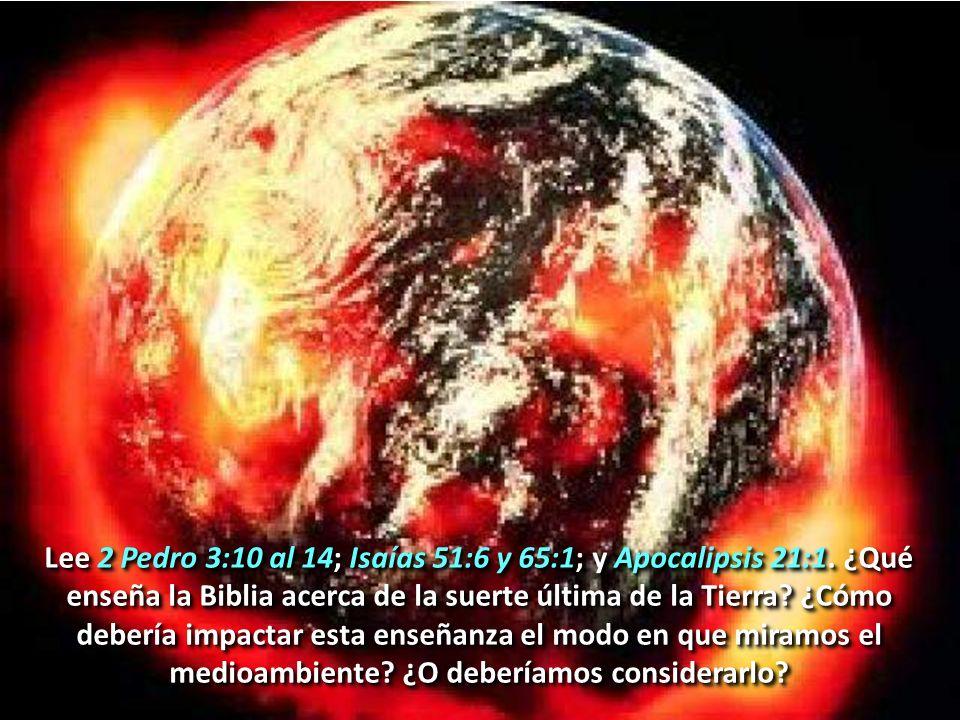 Lee 2 Pedro 3:10 al 14; Isaías 51:6 y 65:1; y Apocalipsis 21:1. ¿Qué enseña la Biblia acerca de la suerte última de la Tierra? ¿Cómo debería impactar