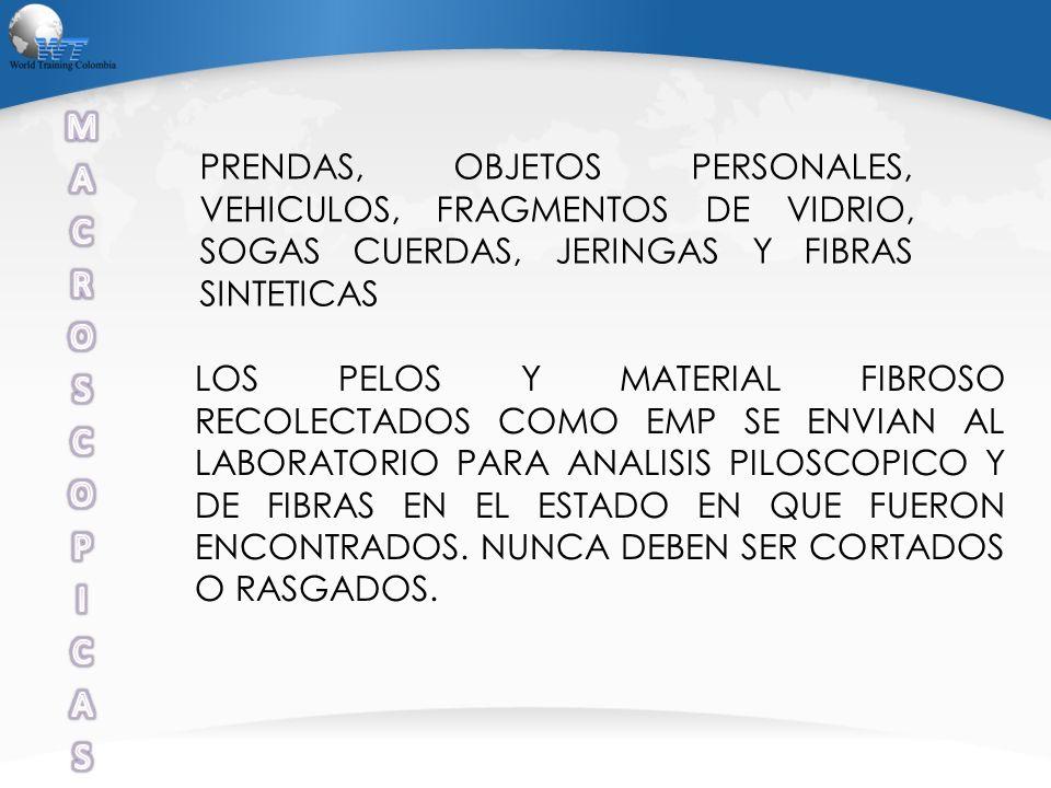 PRENDAS, OBJETOS PERSONALES, VEHICULOS, FRAGMENTOS DE VIDRIO, SOGAS CUERDAS, JERINGAS Y FIBRAS SINTETICAS LOS PELOS Y MATERIAL FIBROSO RECOLECTADOS CO