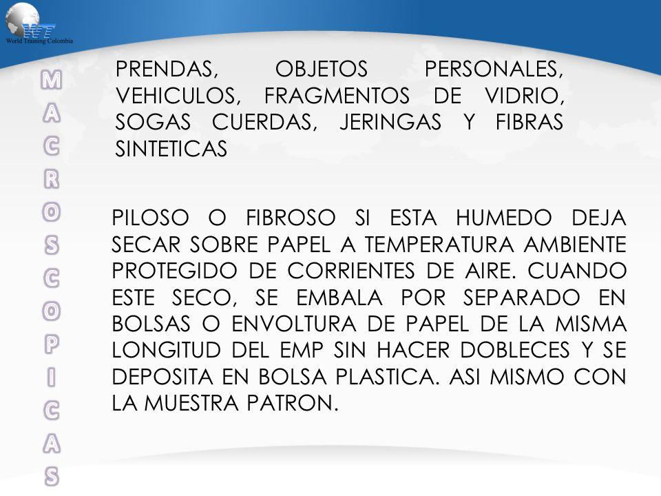 PRENDAS, OBJETOS PERSONALES, VEHICULOS, FRAGMENTOS DE VIDRIO, SOGAS CUERDAS, JERINGAS Y FIBRAS SINTETICAS PILOSO O FIBROSO SI ESTA HUMEDO DEJA SECAR S