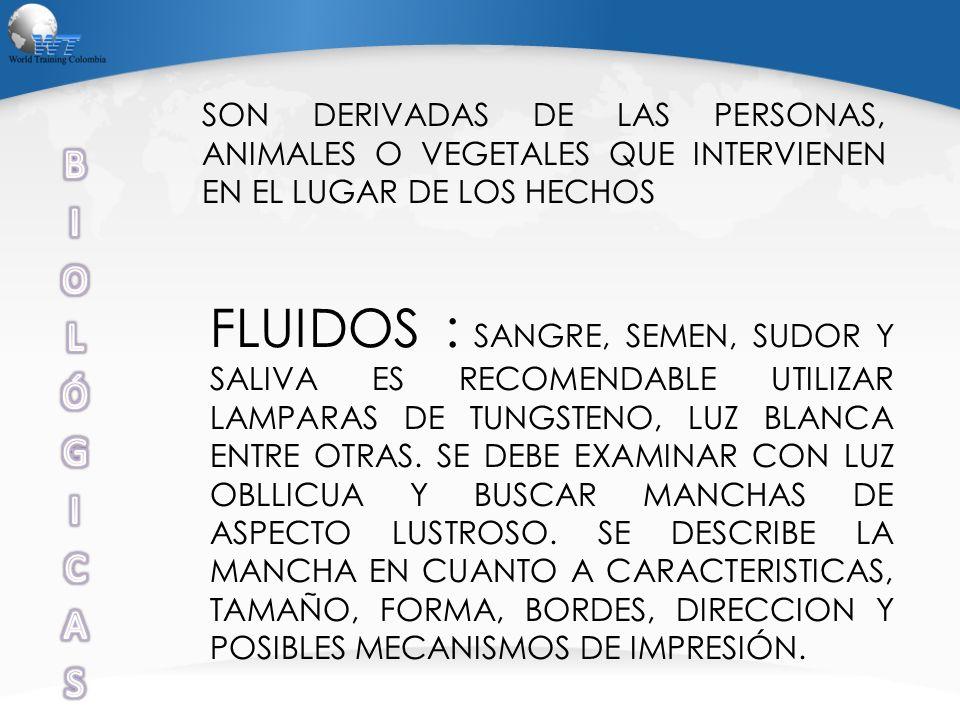 SON DERIVADAS DE LAS PERSONAS, ANIMALES O VEGETALES QUE INTERVIENEN EN EL LUGAR DE LOS HECHOS FLUIDOS : SANGRE, SEMEN, SUDOR Y SALIVA ES RECOMENDABLE