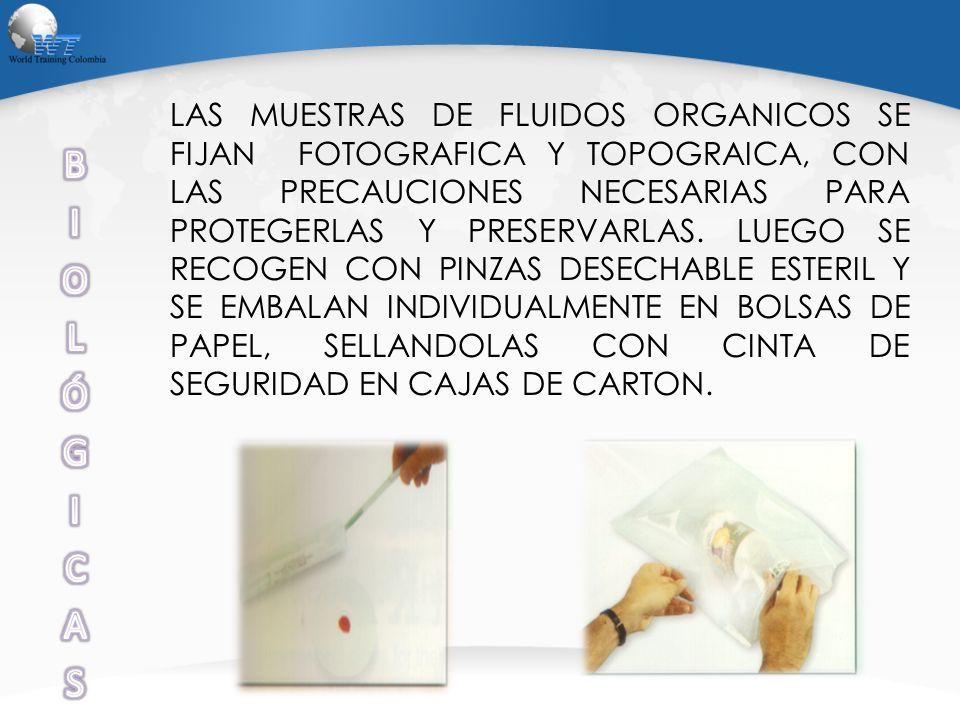 LAS MUESTRAS DE FLUIDOS ORGANICOS SE FIJAN FOTOGRAFICA Y TOPOGRAICA, CON LAS PRECAUCIONES NECESARIAS PARA PROTEGERLAS Y PRESERVARLAS. LUEGO SE RECOGEN