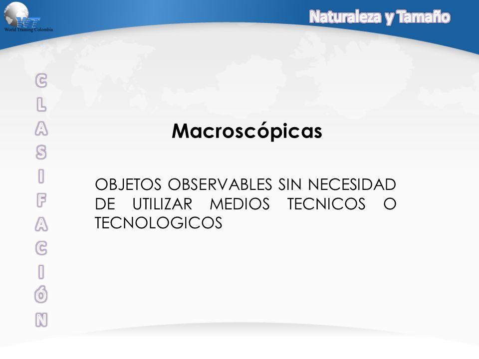 OBJETOS OBSERVABLES SIN NECESIDAD DE UTILIZAR MEDIOS TECNICOS O TECNOLOGICOS Macroscópicas