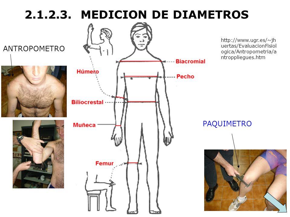 2.1.2.3. MEDICION DE DIAMETROS PAQUIMETRO ANTROPOMETRO http://www.ugr.es/~jh uertas/EvaluacionFisiol ogica/Antropometria/a ntroppliegues.htm