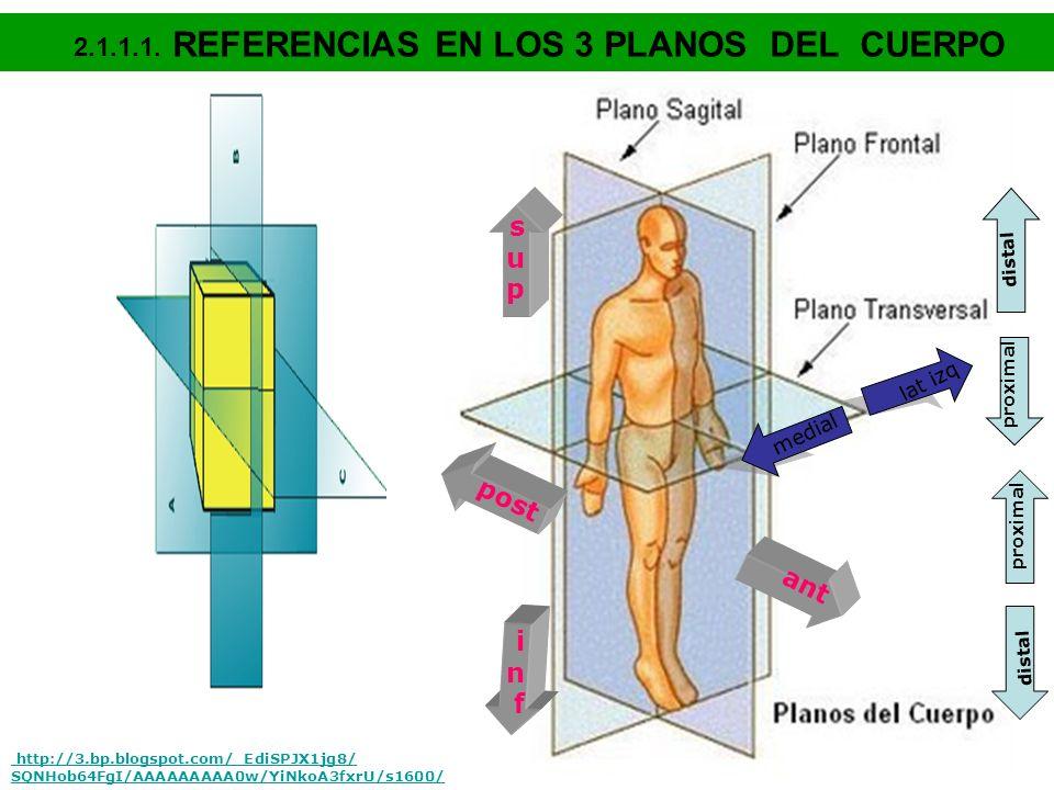 CAPACIDADES BÁSICAS 1- ASEO PERSONAL 2- BAÑO CORPORAL 3- VESTIDO / CALZADO 4- MOVILIDAD / TRANSFERENCIA 5- CONTINENCIA ESFINTERIANA 6- ALIMENTACIÓN PUNTAJE: 6 puntos = AUTÓNOMO 5 puntos = AYUDA / PRECAUCIÓN 4 puntos = DEPENDIENTE / INCAPAZ