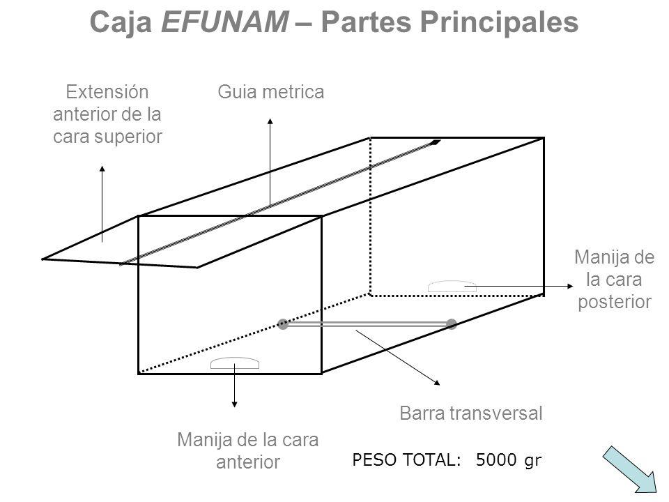Extensión anterior de la cara superior Manija de la cara anterior Manija de la cara posterior Barra transversal Guia metrica Caja EFUNAM – Partes Prin