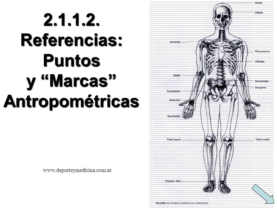 Caja EFUNAM - Medidas 45 cm. 35 cm.15 cm. 25 cm.