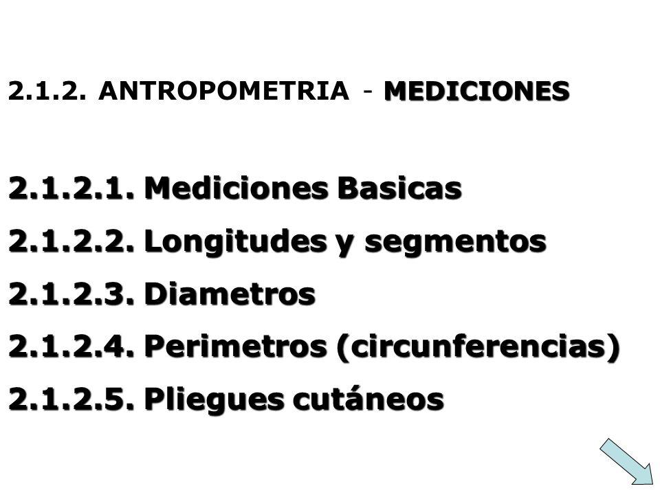 MEDICIONES 2.1.2. ANTROPOMETRIA - MEDICIONES 2.1.2.1. Mediciones Basicas 2.1.2.2. Longitudes y segmentos 2.1.2.3. Diametros 2.1.2.4. Perimetros (circu