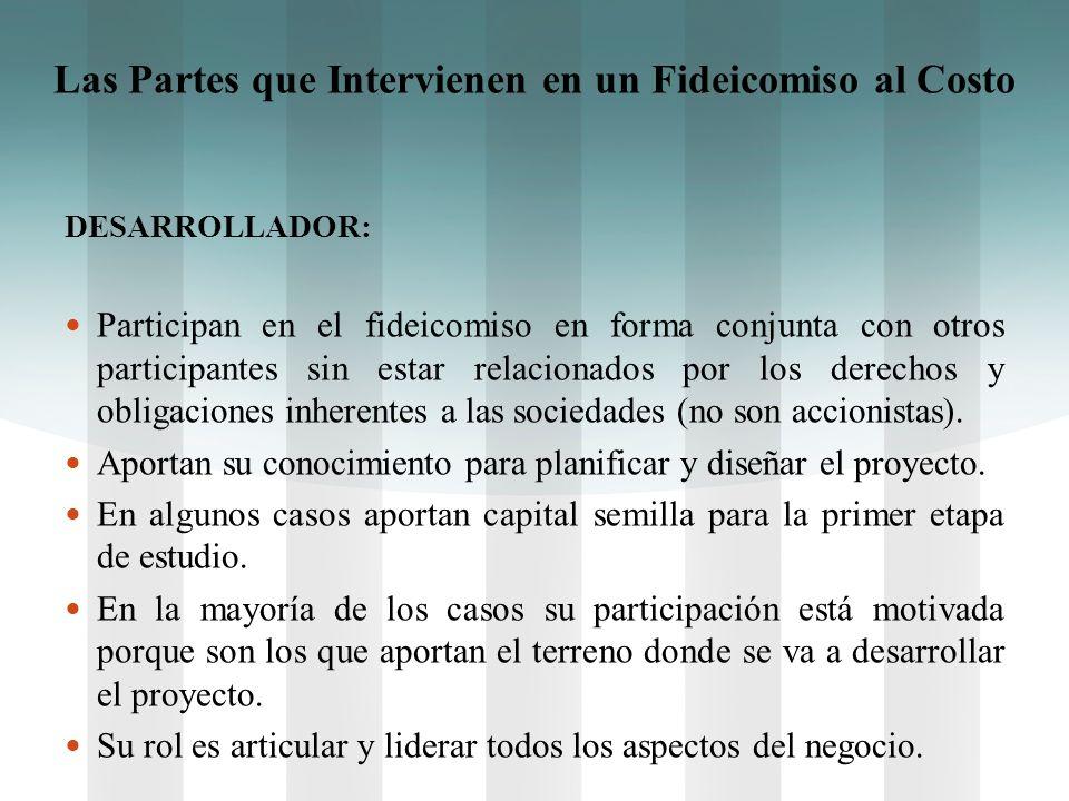 DESARROLLADOR: Participan en el fideicomiso en forma conjunta con otros participantes sin estar relacionados por los derechos y obligaciones inherente