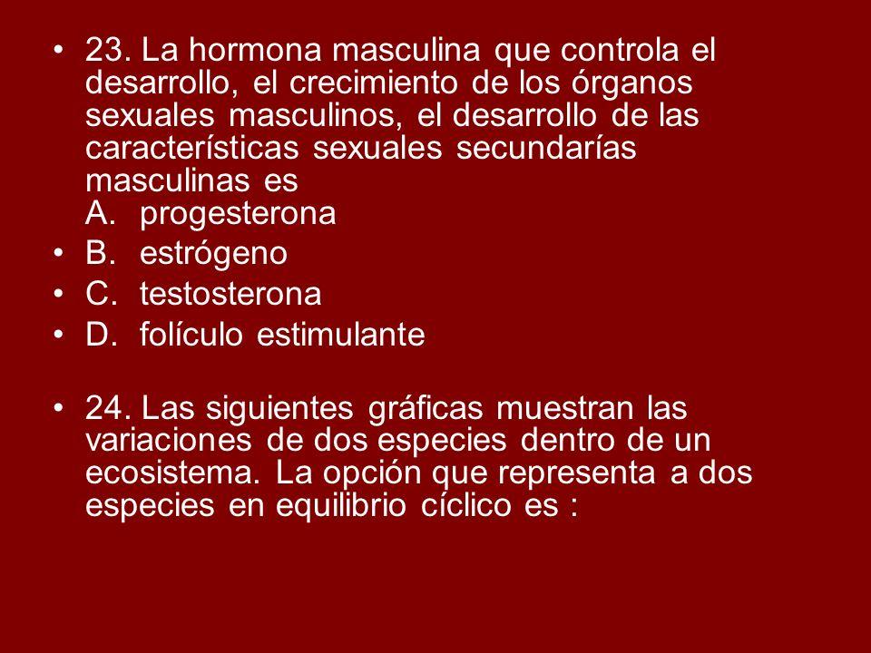23. La hormona masculina que controla el desarrollo, el crecimiento de los órganos sexuales masculinos, el desarrollo de las características sexuales
