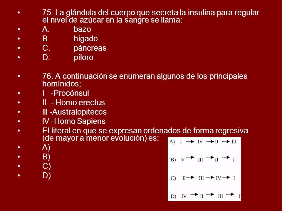 75. La glándula del cuerpo que secreta la insulina para regular el nivel de azúcar en la sangre se llama: A.bazo B.hígado C.páncreas D.píloro 76. A co