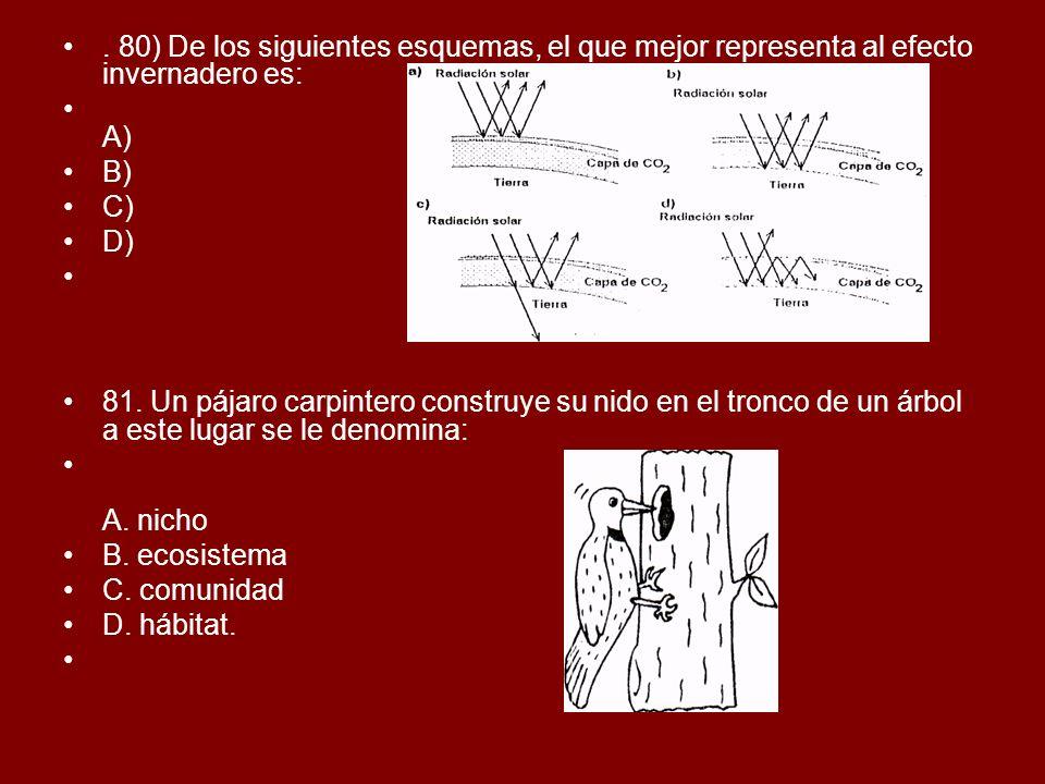 . 80) De los siguientes esquemas, el que mejor representa al efecto invernadero es: A) B) C) D) 81. Un pájaro carpintero construye su nido en el tronc